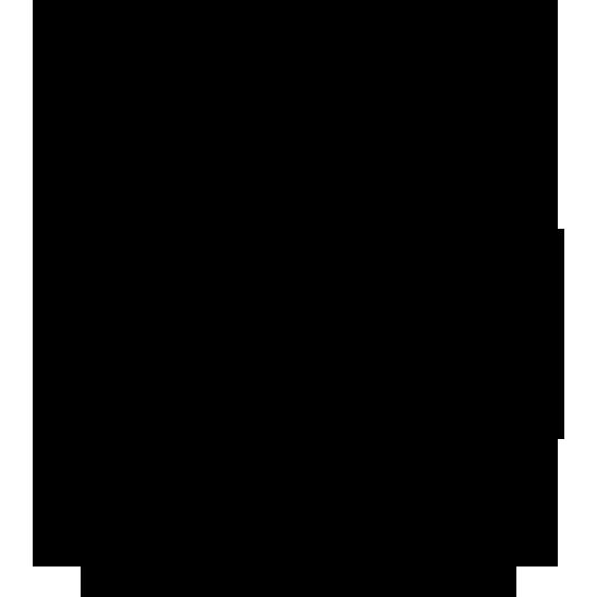 wav-icon